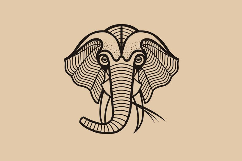Matt_blease_liberty_elephant_6_905